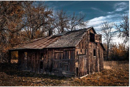 Dilapidated cabin in the woods